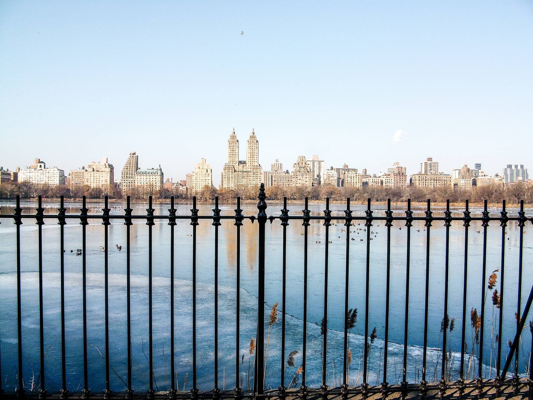 Central Park à Manhattan