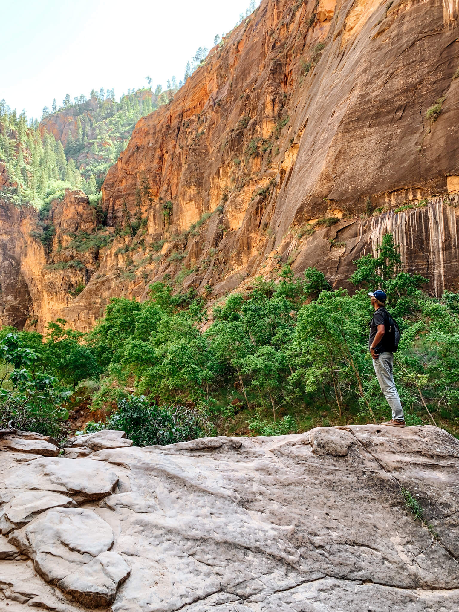 Les balades au Zion National Park