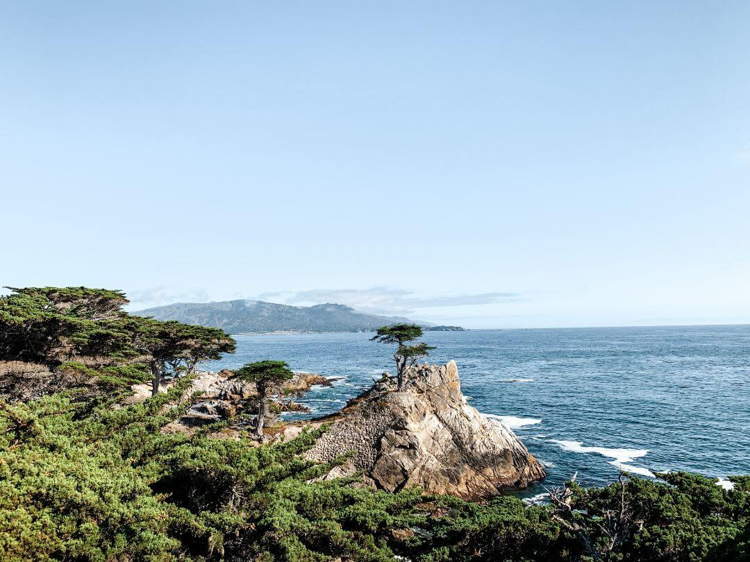 Lone Cypress Carmel-by-Sea sur la Highway 1