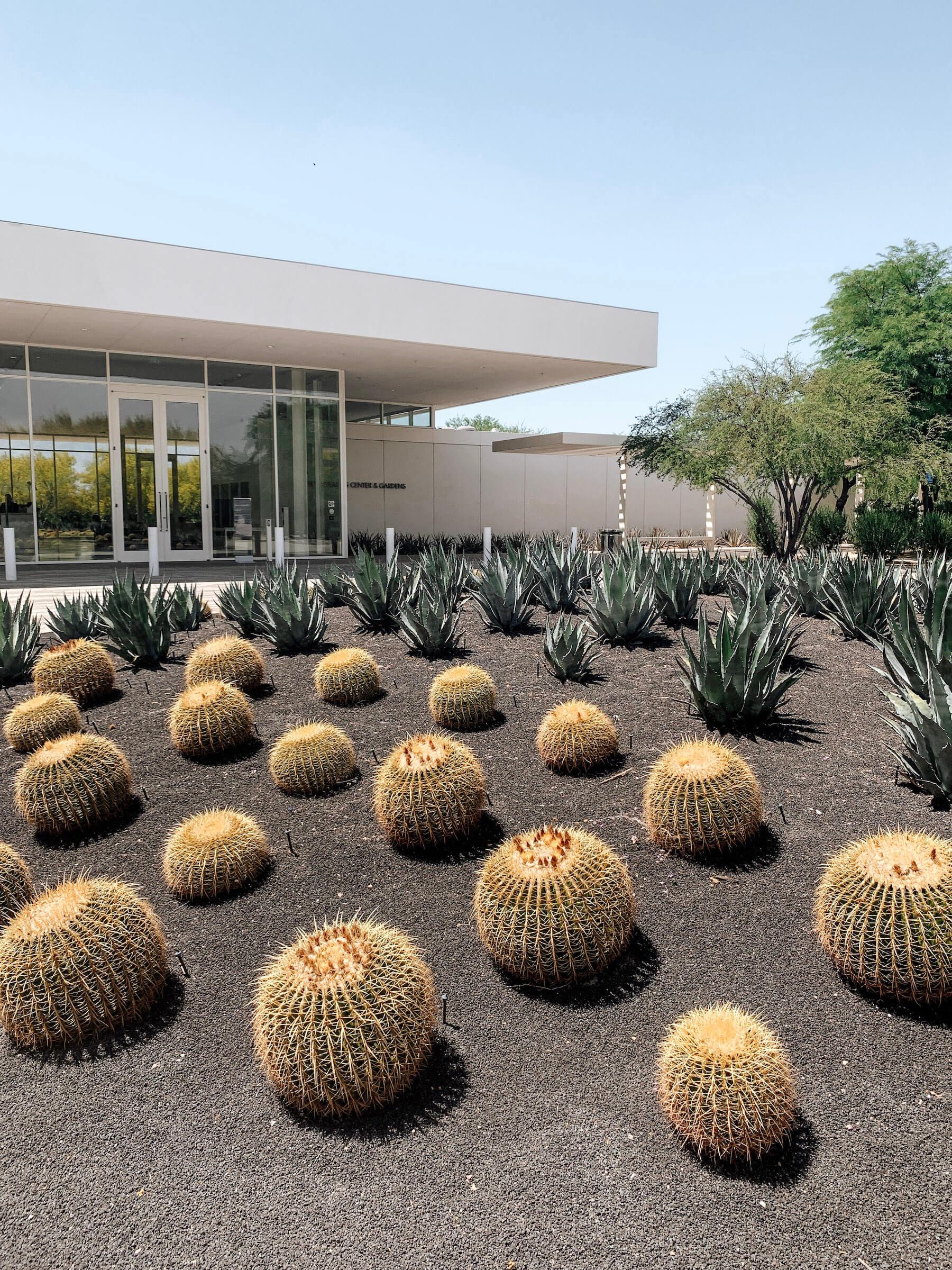 Sunnylands Center and Gardens - méconnus incontournables Palm Springs - voyage en Californie